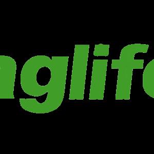 Logo Staglife